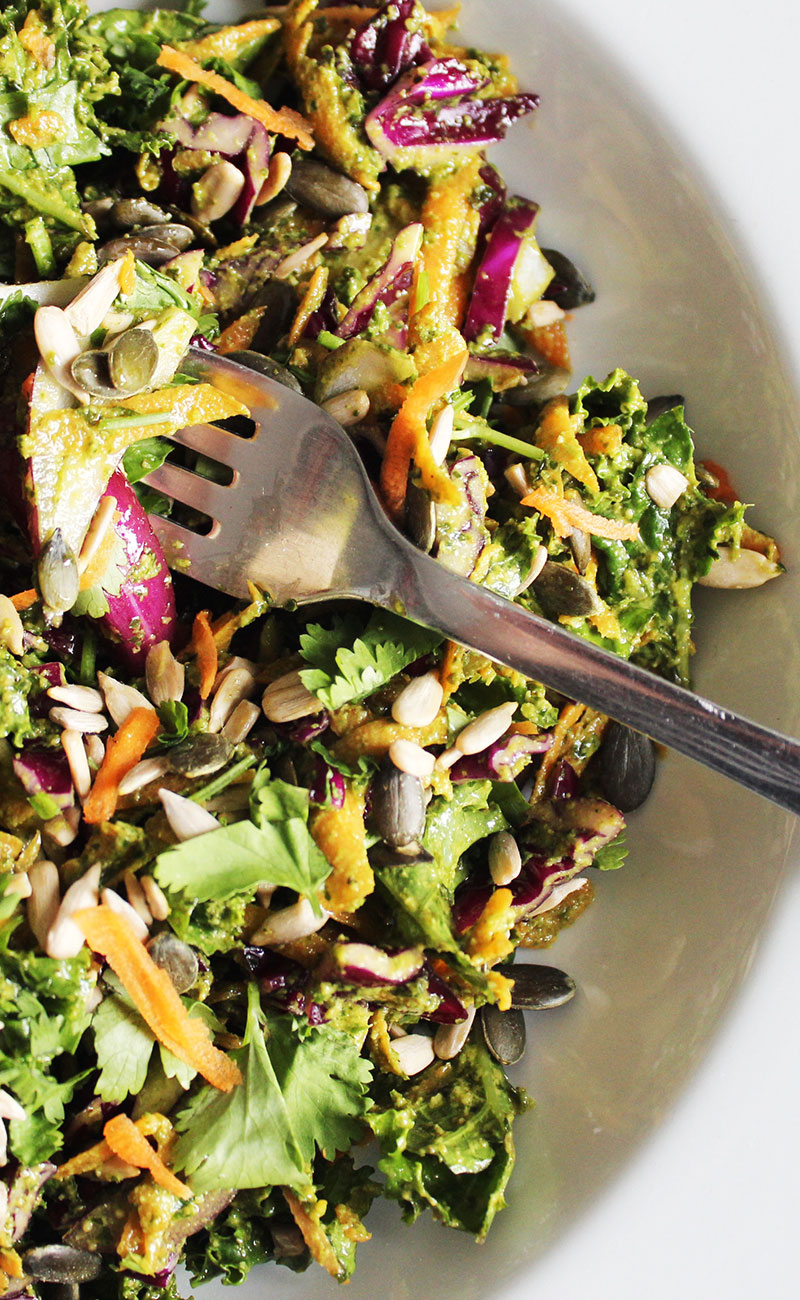 Anti-cancer, alkaline, kale, red cabbage and seeds salad with superfood pesto